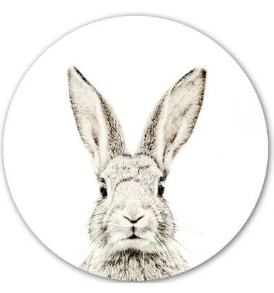 groovy magnets - magnet wall sticker rabbit