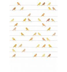 inke - carta da parati pannello uccellini (gele vogels)