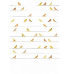 inke - wall print birds vogels geel