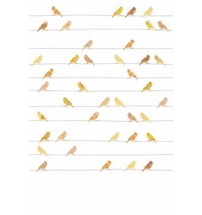 inke - wall print birds vogels geel