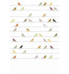 inke - carta da parati pannello uccellini (vogels bont)