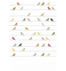 inke - wall print birds (vogels bont)