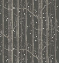 cole & son - wallpaper woods & stars (inky black/silver)