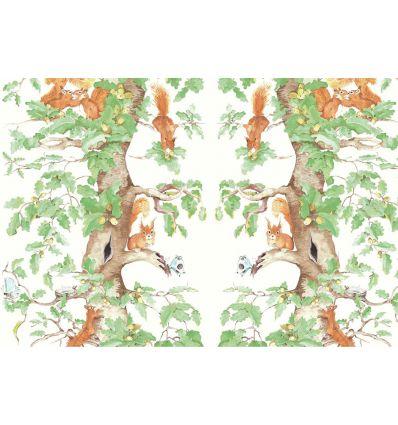 AILANTO DESIGN carta da parati woodland squirrels (green)