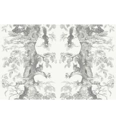 AILANTO DESIGN carta da parati woodland squirrels (grey)