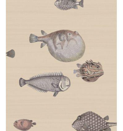FORNASETTI wallpaper acquario taupe